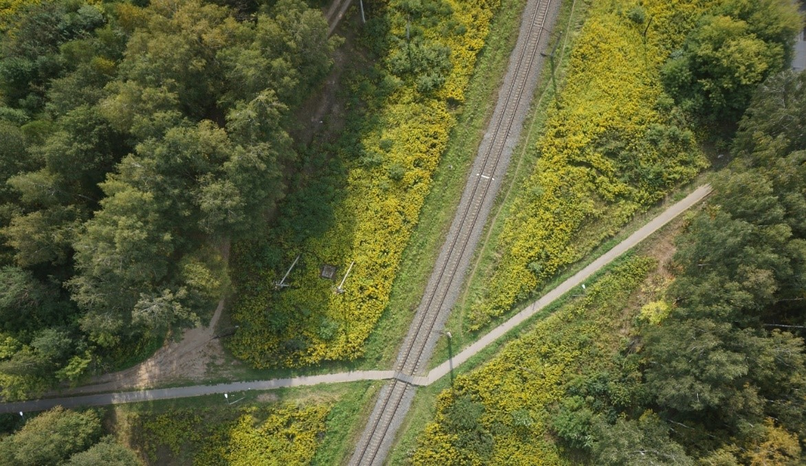AERIAL PHOTOGRAPHY OF A RAILWAY